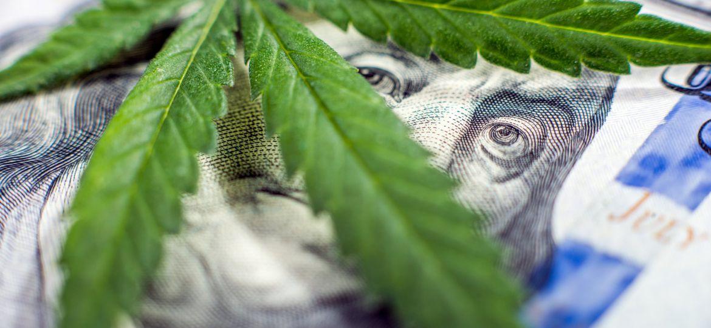 Cannabis Money